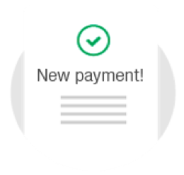 icon new payment